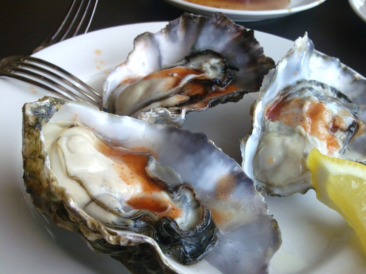 super plump oysters at Equinox